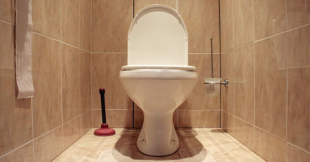 Clogged Toilet Repair Cartersville, GA